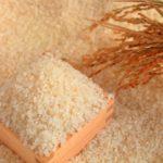 どちらが体に良い?精白米と玄米の違い