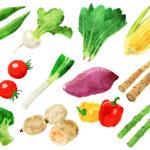 消化できない食物繊維が、なぜ体にいい?
