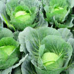 野菜の価格高騰にどう対応する?家族の健康を守る主婦の食選術